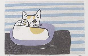 猫の目ブログのイメージ